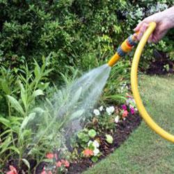 az service tonte pelouse